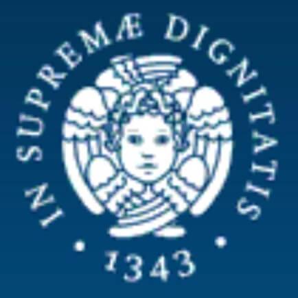 Logo quadrato gruppi Università di Pisa